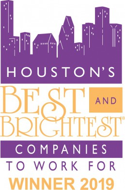 houston best and brightest 2019 small